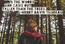 Hiking & Mountain Quotes / Inspiring quotes to get outdoors in nature! Make the everyday less ordinary. To contribute to the board, send me a message: jess@adaptnetwork.com