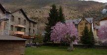 Jardí Hostal Vall d'Aneu / Flors i moments del nostre Jardí.