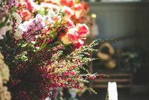 Decoración floral de espacios