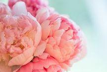 Decorar tu casa con flores // Flower deco / Inspiración para decorar tu casa con flores