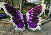 ♥ KVĚTINOVÉ * zahrady ♥ / ♥ Květinové zahrady * to je oáza klidu a pohody ♥ A různé druhy krásných soch ♥
