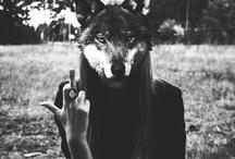 I'm an animal / Anthropomorphism