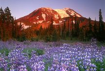 WA - Mt Shuksan, North Cascade NP, Mt Baker, Mt Stuart, Lake Chelan, Mt Adams