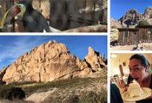 To Do & See in New Mexico / The best things to do, see and eat in New Mexico as an RV traveler, based on our experiences and recommendations from others.