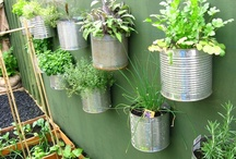 Garden Spaces / You don't need much space to have a flourishing, productive green space. No excuses - get planting!