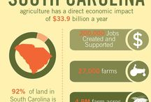 Farming in South Carolina