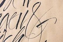 Typography / Typography. Fonts. Illustrations