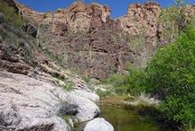 Fish Creek, Arizona / Deep canyon in the Superstition Mountains east of Phoenix, containing a permanent stream that forms little cascades and long, shallow pools: http://www.americansouthwest.net/arizona/superstition-mountains/lower-fish-creek.html