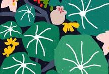 illustration, colors