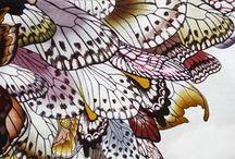 Fairy Wings / Wings