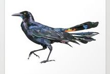 Crows / Crows for inspiration