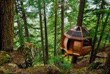 Cabins / A collection of cabins #cabins #ideas