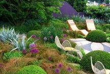 Home Gardens / A collection of home gardens #homegardens #home #gardens #ideas