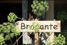 Brocante à la ferme / Détournement, récup et recyclage / by Traces d'Agriculteurs