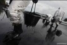Derrame de petróleo en Tailandia.  / Imagenes del derrame de petróleo en Tailandia, que conllevó a una gran contaminación en toda la zona.