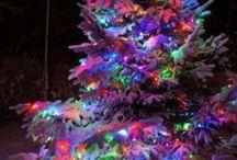 Christmas / by Karon Knoth