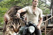 Chris Pratt Yo.