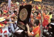 Rugbi - Champions / Finals del campionats i els seus guanyadors i guanyadores.