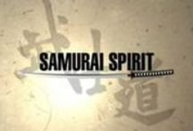 TV: Samurai Spirit / Samurai Spirit was a TV documentary on NHK World from 2008 to 2009, focusing on the traditional martial arts of Japan. It was hosted by Nicholas Pettas, a Kyokushin Karate practioner and former K-1 Grand Prix champion.