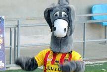 Mascotes i Supporters / Són les mascotes i els seguidors dels diferents equips de rugbi.