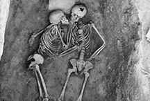 Amazing skeleton remains / Skeletal remains that are absolutely amazing finds and tell a story