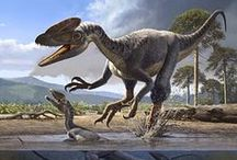 Dinosaurs / Fossils, extinction, breeds, evolution