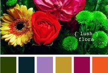 Mehndi Color Palette