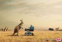 Advertising / by Matthew Wyatt