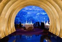 Suite501 | Dubai | Foodie Lovers / best restaurants. Los mejores restaurantes. www.albertalagrup.com