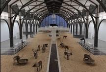 Suite501 | Milano | Galleries / art is beautiful. El arte es precioso. www.albertalagrup.com