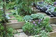 Gardens / I love flowers, community gardens..please share yours.