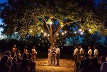 My wedding at dusk⭐️ / by Rhianna Skorepa