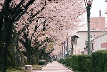 Japan, One day!!
