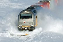 TRAIN ROADS