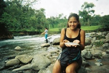 Bello Ecuador / Ecuador is natural beauty, lush jungles, wide rivers, friendly people and beautiful food. / by Papos Patio
