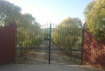 Mi huerto (Verano 2013)