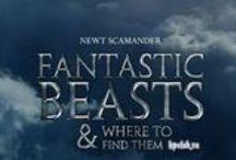 Фильмы о Гарри Поттере / Все новости о фильмах вселенной Гарри Поттера и актерах, в них снимавшихся.