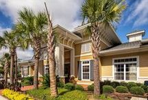 Charleston North Charleston - Summerville Area Apartments for Rent / When you live in one of our communities, your needs are answered by a team of professional, caring team members who take pride in providing a great place to live. You'll also enjoy unmatched services, from modern conveniences like paying your rent online to a guaranteed quick response to any maintenance issues. And you'll find our communities are not only of the highest quality, but also in top locations.