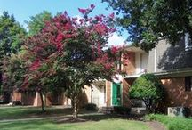 Greater Richmond Apartments for Rent / When you live in one of our communities, your needs are answered by a team of professional, caring team members who take pride in providing a great place to live. You'll also enjoy unmatched services, from modern conveniences like paying your rent online to a guaranteed quick response to any maintenance issues. And you'll find our communities are not only of the highest quality, but also in top locations.