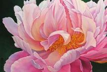 Paintings of Peonies / Such intricate flowers. Not the easiest flower to paint!! However, there are some incredible and creative pieces of art on this subject.