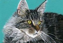 Paintings of Maine Coon cats / As the owner of 4 beloved Maine Coon cats, I had to have a place to show my paintings, plus those of other artists! In my opinion they are the best cats in the world!!