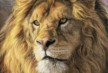 Paintings of Lions and Tigers / These fantastic big cats are the subject of some beautiful wildlife art.