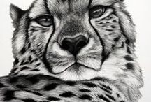 Pencil Drawings of Animals / Some fantastic detailed realistic animal studies in pencil. Amazing and so lifelike!