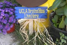 Go Bruins! / All about UCLA