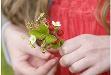 Strawberry Fields / by ~Danielle D~