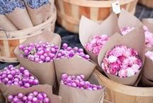 Pretty Petals / Beautiful blooms and florals to brighten your day xo
