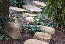 Environnement : Jardin / Y'a du boulot... :-/