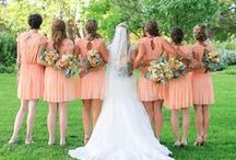 Bridesmaids/Groomsmen / by brittaney Hoehn