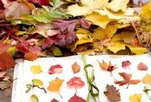 Activités d'automne / Créatives, poétiques et réalistes, des activités pour célébrer l'automne... pendant 3 mois !