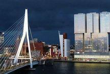Life in Rotterdam